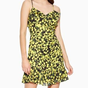 NWT Parker Erica Combo limon dress, Size 0